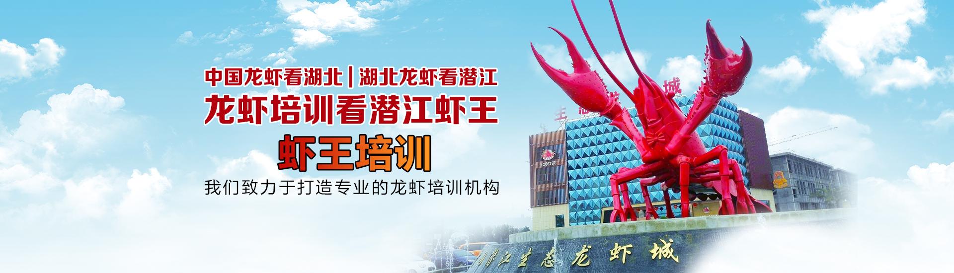 潜江小龙虾培训